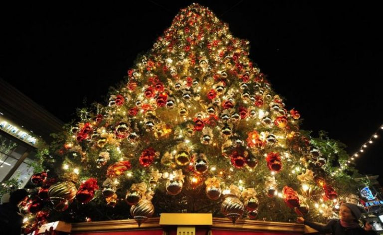 albero_di_natale-prezzi